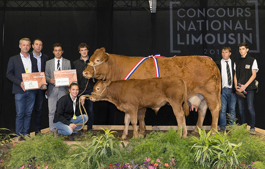 Earl Bourdarias - Limousin - Champion of the World 2019