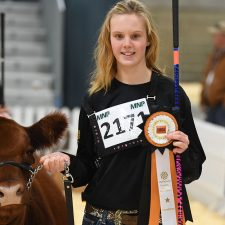 UFA Junior Futurity - Farmfair International