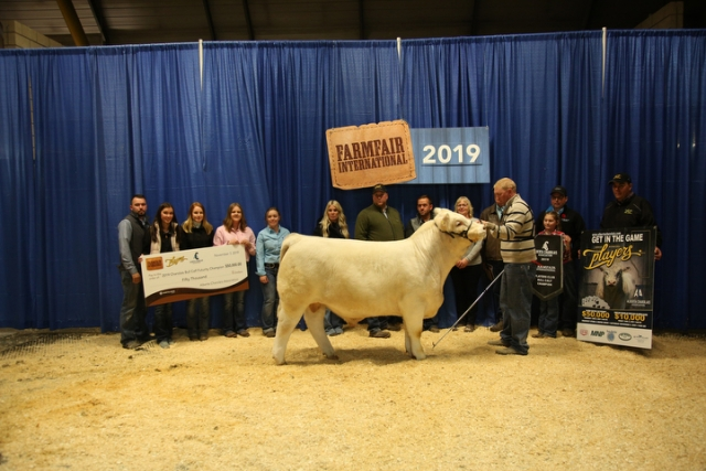 Player's Club Charolais Bull Calf Futurity
