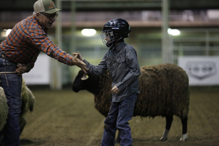 Mutton Busting Competition