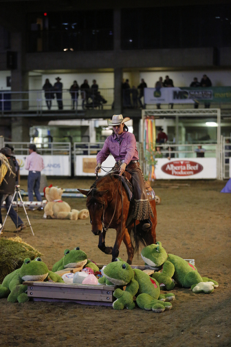 Extreme Cowboy Competition