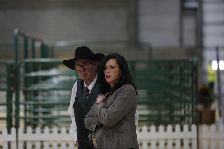 Prospect Steer & Heifer Show