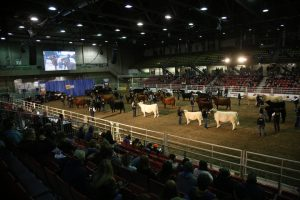 Alberta Supreme Show Presented by RAM
