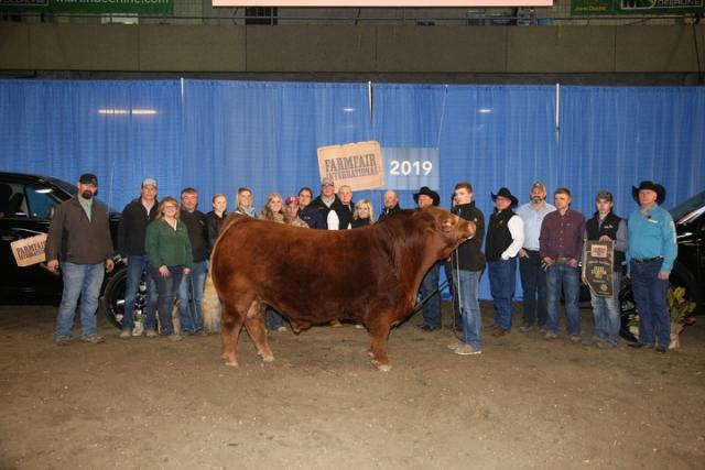 Grand Champion Bull - Alberta Supreme Show Presented by RAM